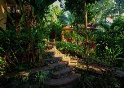 path-1