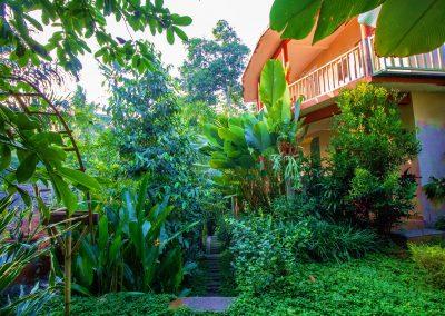 Shanti Toya Ashram surroundings